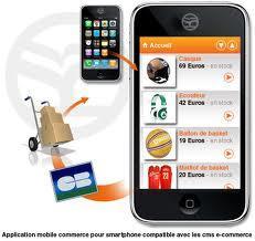 ecommerce mobile stratégie marketing communicaton réseaux sociaux site multi-écran développement web responsive design